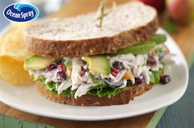 California Chicken Salad with Craisins® Dried Cranberries Recipe 加州鸡肉蔓越莓干沙拉食谱