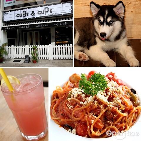 cubs & cups, sri hartamas, kl, husky, pet friendly, cafe, 宠物咖啡厅