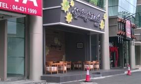 Spring's Leaf Café